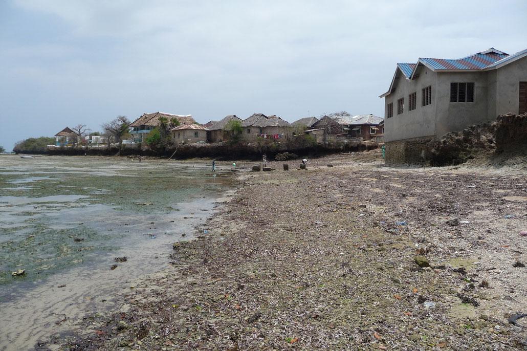 Es herrscht Ebbe als wir Wasini Island erreichten.