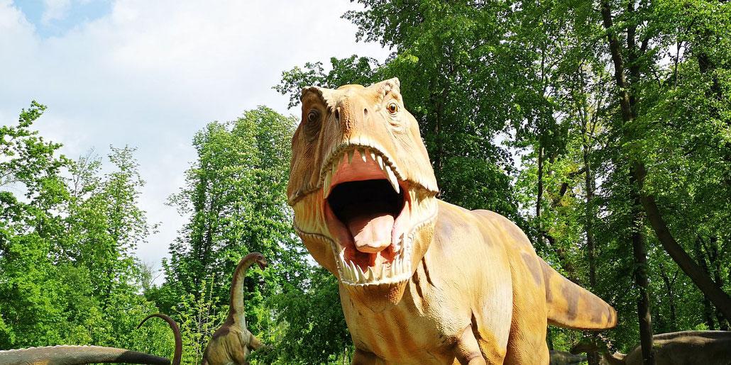 Dinosaurier Roboter, Dinosaurier zum Reiten, Dinosaurier zum Fotografieren. Ein Dino Erlebnispark nahe beim Wien. Super Sache.