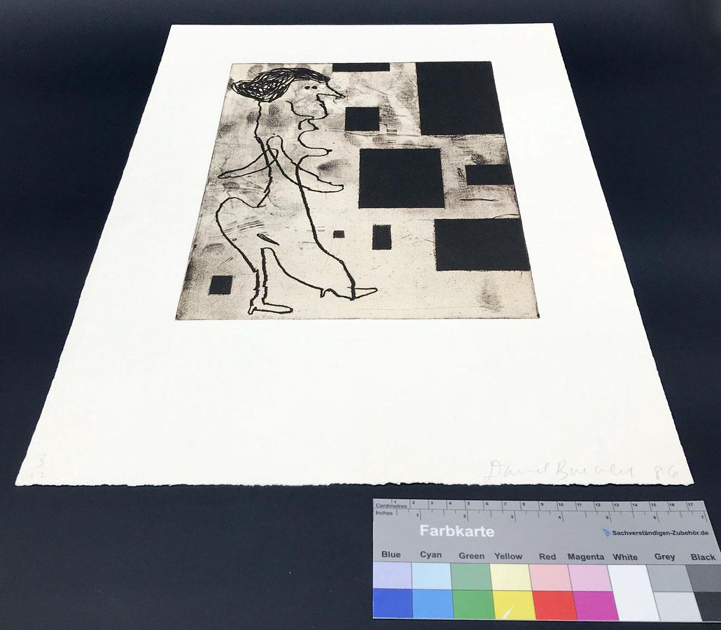 Donald Baechler Edition art prints