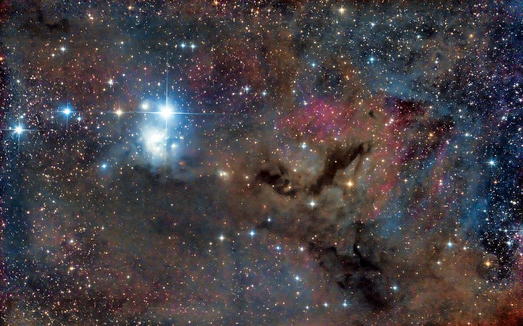IC348付近