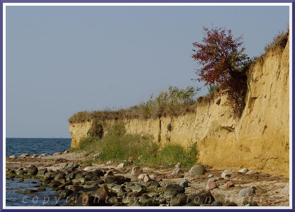 Steilküste bei Klein Zicker.