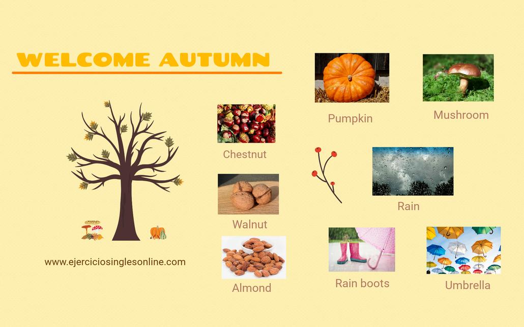 Vocabulario otoño inglés.