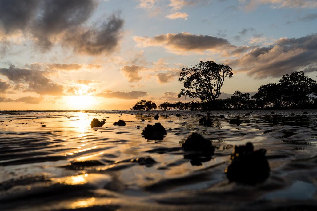 Sunrise at Cape Tribulation beach in Queensland, Australia