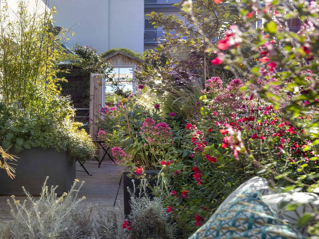 Réalisation Jardin suspendu jardin terrasse marseille toit terrasse