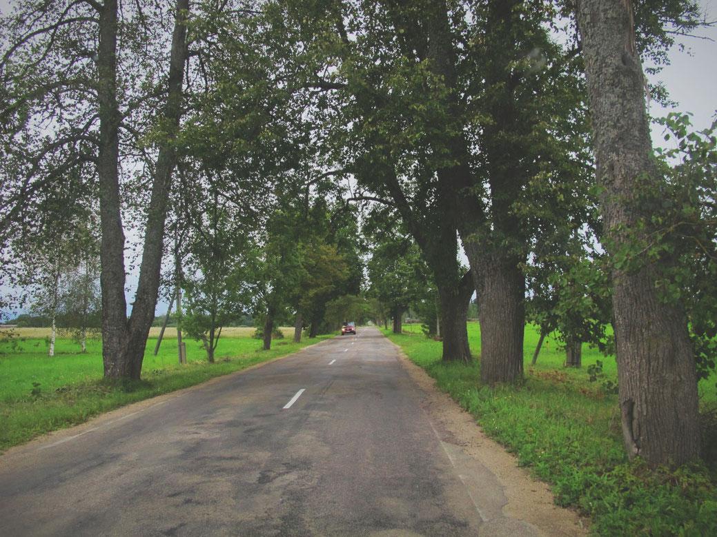 lettonie route