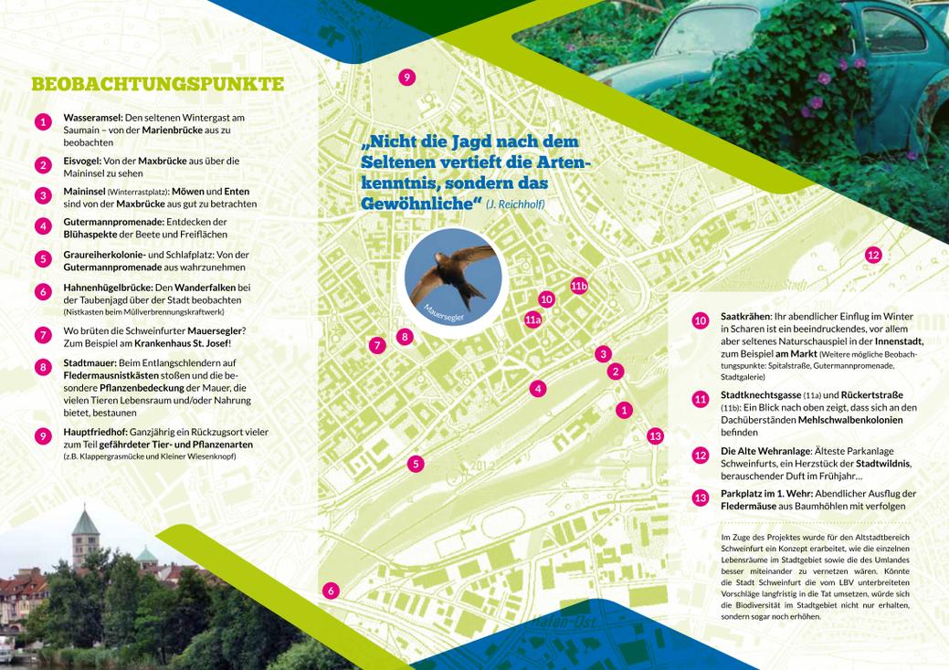 Stadt Wildnis Schweinfurt Flyer Seite 2