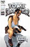 Tomb Raider 12