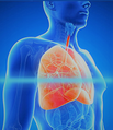 Lungenmessung, Gesundheitscheck;  Scan; MesseVital; Stress; Gesundheit; Vitamine, Körpersysteme;  Immunsystem; entgiften, Schwermetalle ausleiten; ADHS; sanieren; Wohlbefinden; entfetten, entschlacken, entsäuern, Wohlbefinden, ADHS; Lebensqualität