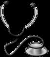 Tierarztpraxis Häbich, vogelkundiger Tierarzt: jährliche Vorsorgeuntersuchungen