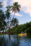 Location kayak gites les cocotiers Guadeloupe