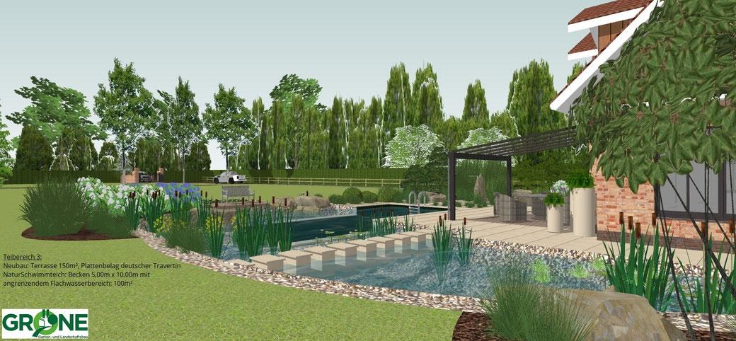 3D Planung, Naturpool, Schwimmteich, Natursteinterrasse, Trittplatten im Flachwasserbereich, Gröne Garten- und Landschaftsbau, Holzdeck, Sonnendeck, Teichpflanzen,  Terrassenüberdachung
