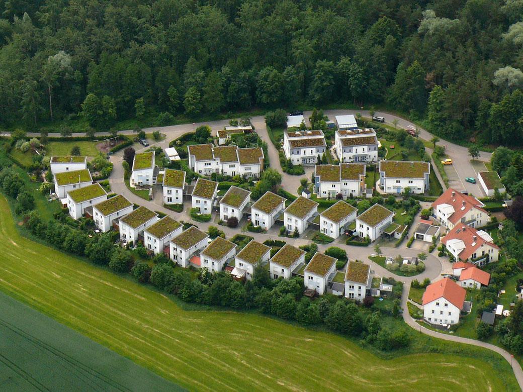 Dachbegrünung Gründachsiedlung