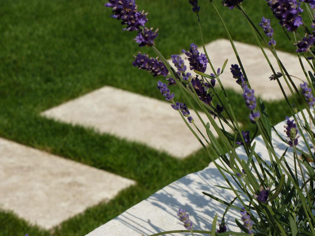 Travertin Naturstein Terrasse Rasen Lavendel