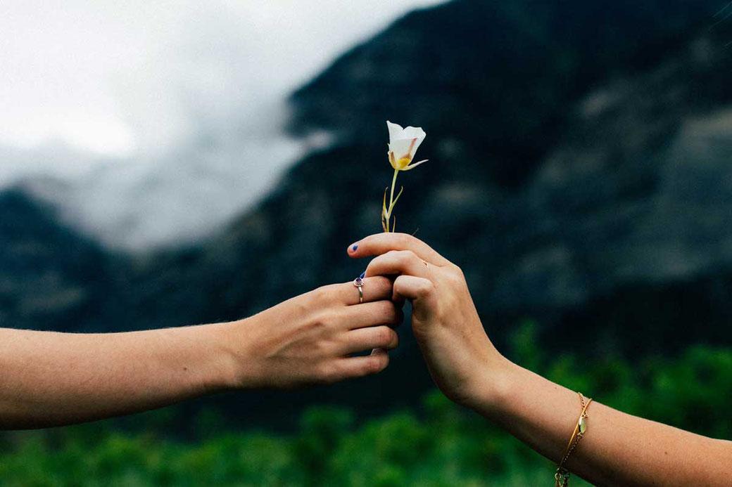 Dankbarkeit Liebe Freundschaft Sinn Blume Glück Glückseligkeit Berge