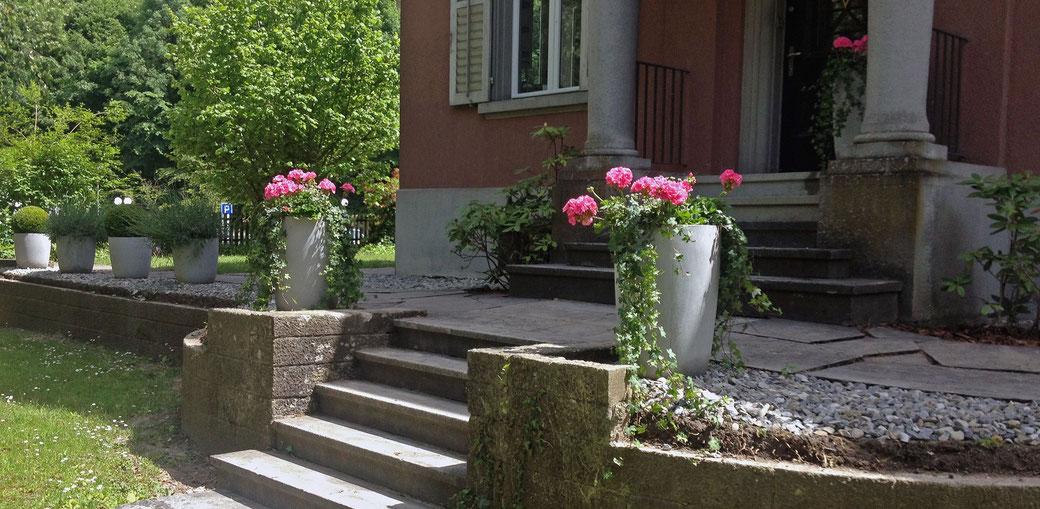 Bepflanzung Aussenbereich Lenzburg