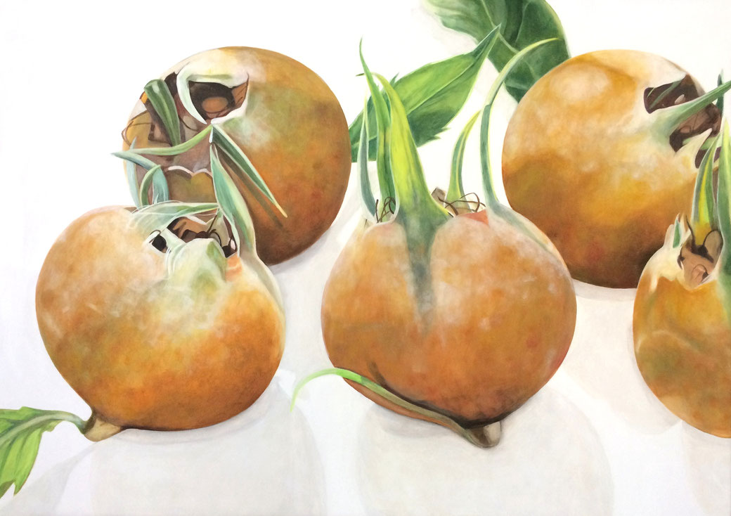 Mespilus germanica I 2017, 70x50cm, oil canvas