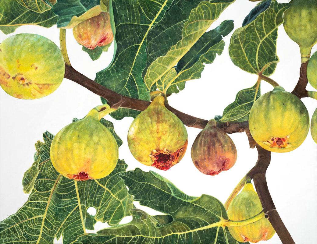 ficus carica smyrna feige I, moraceae, 130x100cm, 2021, oil on linen