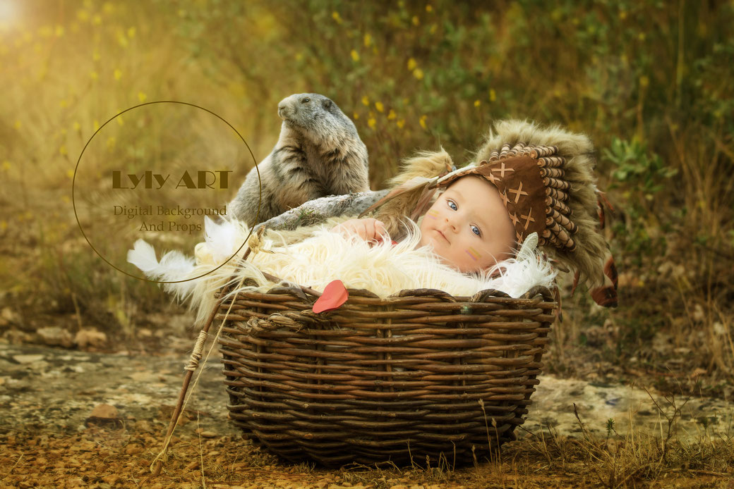 overlay pour photographe professionnel animaux