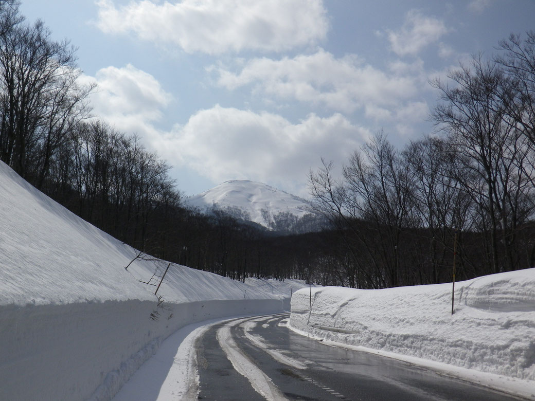 The roads of TOWADAKO  snow removes every day. Very clean. But you must need to check your rental car is winter tires.If your car is a normal tire, it is very dangerous.