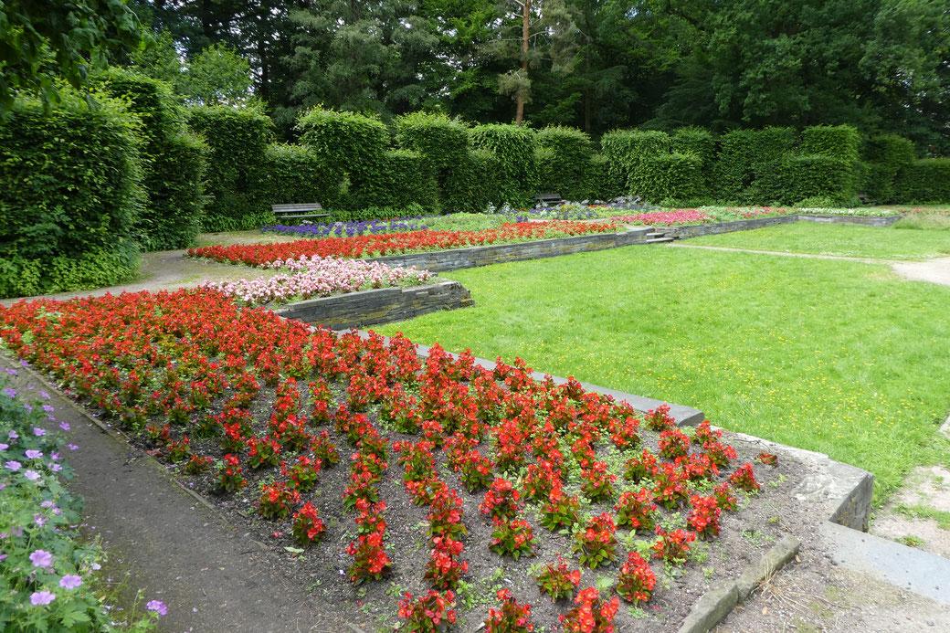 Blick in den Heckengarten