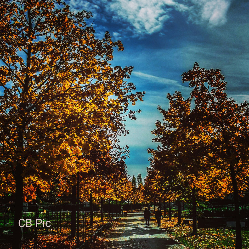 Goldener Oktober CB Pic