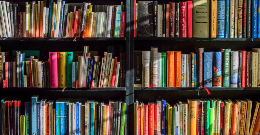Heilpraktikerin Bärbel Bröskamp empfiehlt Bücherkaufen & Gutes tun © LubosHouska Pixabay