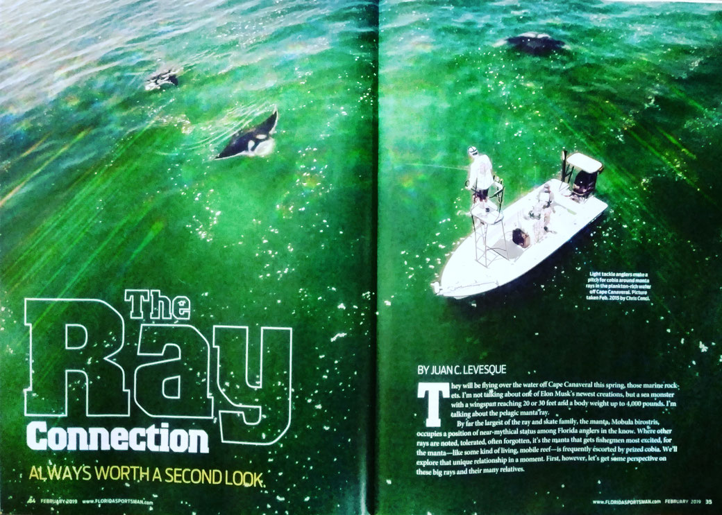 Juan C. Levesque, Fishery Biologist; Feature Magazine Artice: The Ray Connection (Florida Sportsman Magazine February 2019)
