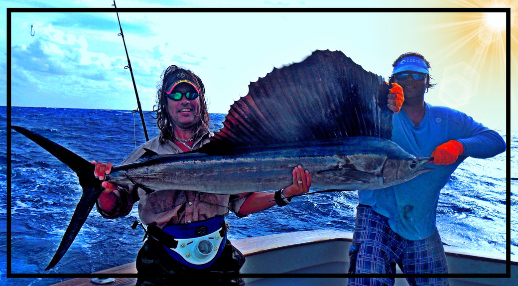 Juan C. Levesque, Avid Angler, with an Atlantic sailfish (Istiophorus albicans) caught off Islamorada with Capt. Paul aboard the Relentless. The fish was caught on light spinning tackle; 20 lb test.