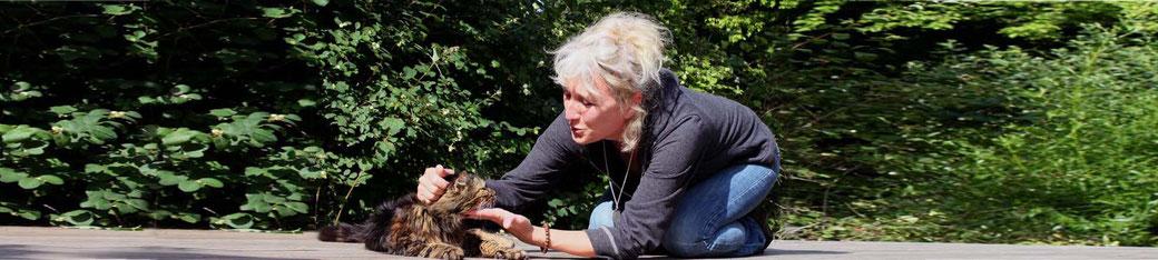 Stage Communication Intuitive avec les Animaux  Brigitte Ballard - annuaire des therapeutes en touraine val de loire via energetica