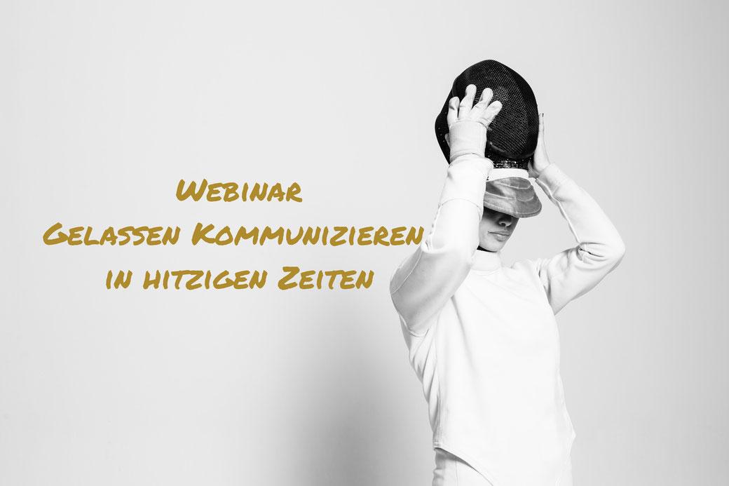 Webinar Kommunikation und Konflikt von Birgit Allerstorfer