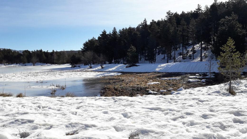 TC189 Raquetes de neu - Llac d'en Calvet