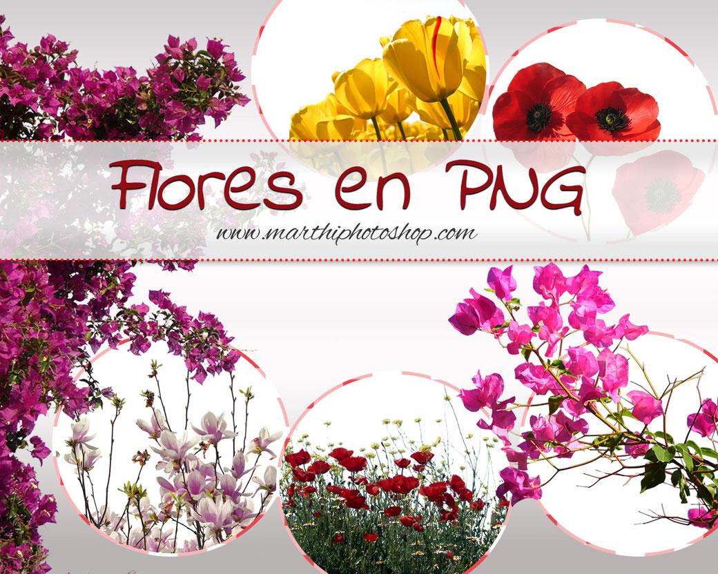 Flores en PNG