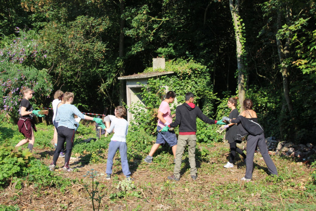 chantier-participatif-cite-brossiers-tracy