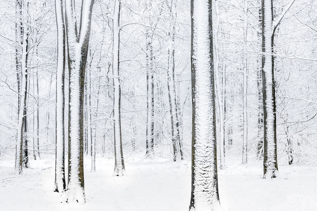 Nature art - Eext Drenthe © Jurjen Veerman