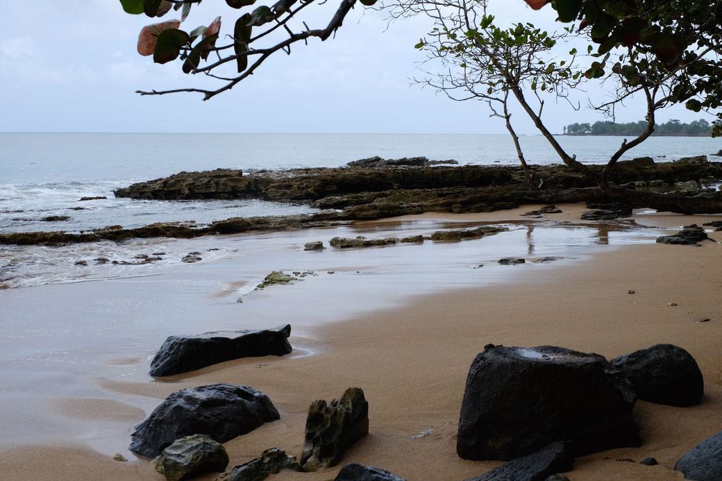 Strand an der Nordseite von Guadeloupe