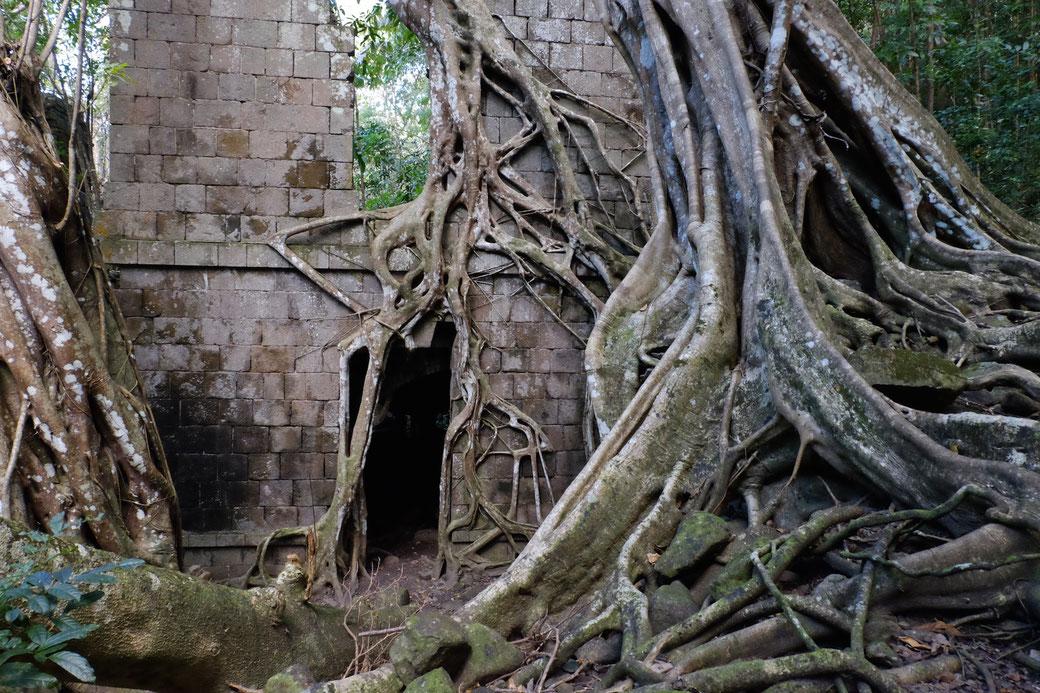 Ruinen der Commanders Quarters auf den Cabrits