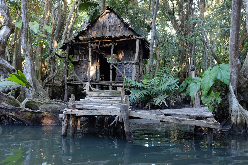 Calypso Hut am Indian River
