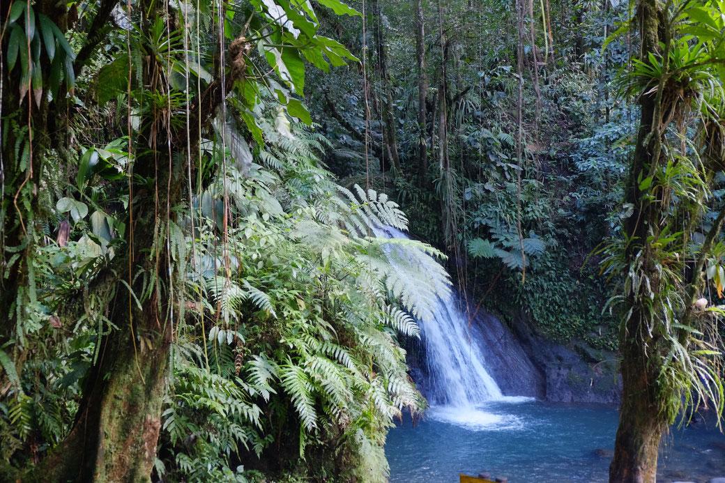 "Wasserfall ""Cascade aux Ecrevisses"" im Parc National"