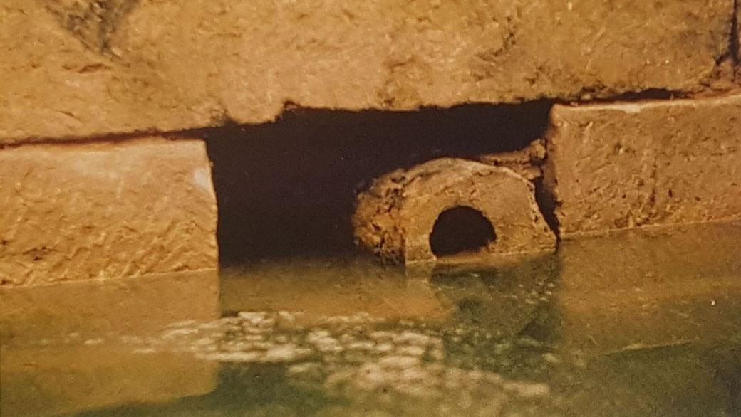 Fundort der Otterberger Holzdeichel von 1168, Bild Historischer Verein Otterberg