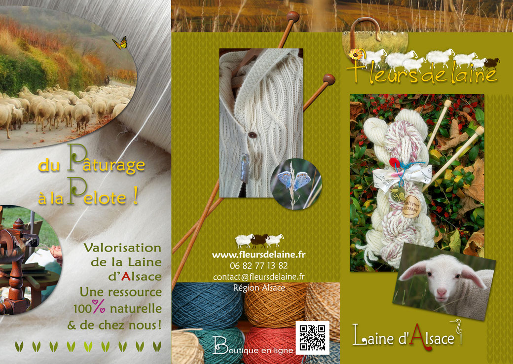 Laine naturelle de France Alsace