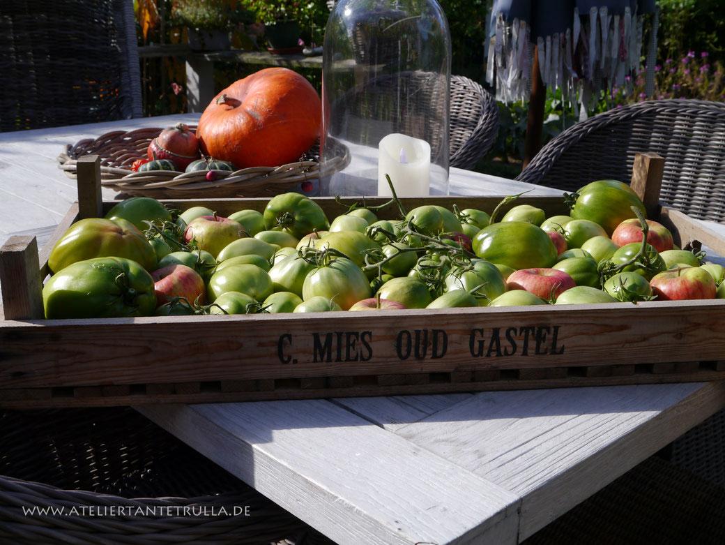 alte gemüsekiste voll grünen tomaten