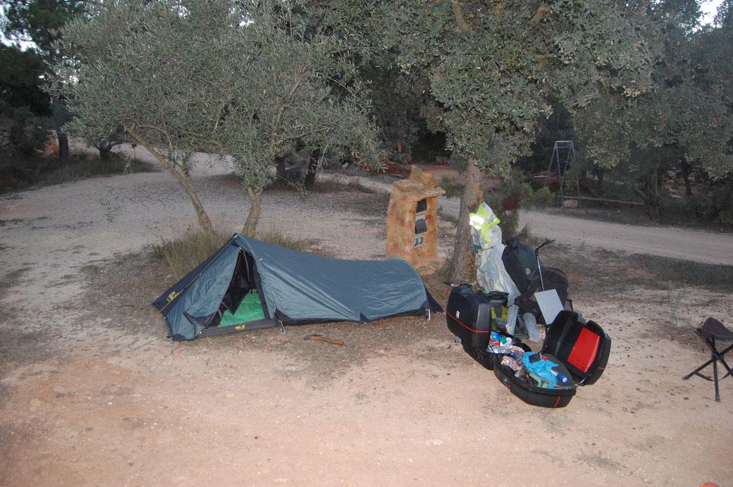 Unterm Olivenbaum ein schöner Traum