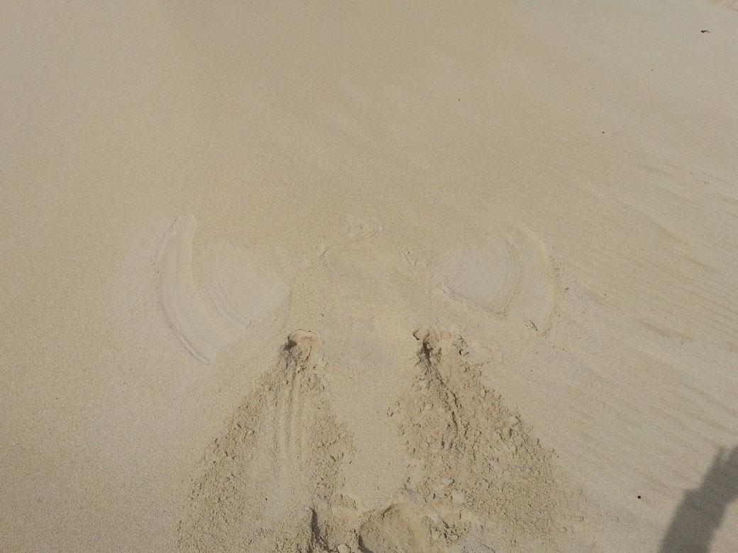 Mein erster Sandengel....etwas missraten und nur schwer erkennbar....
