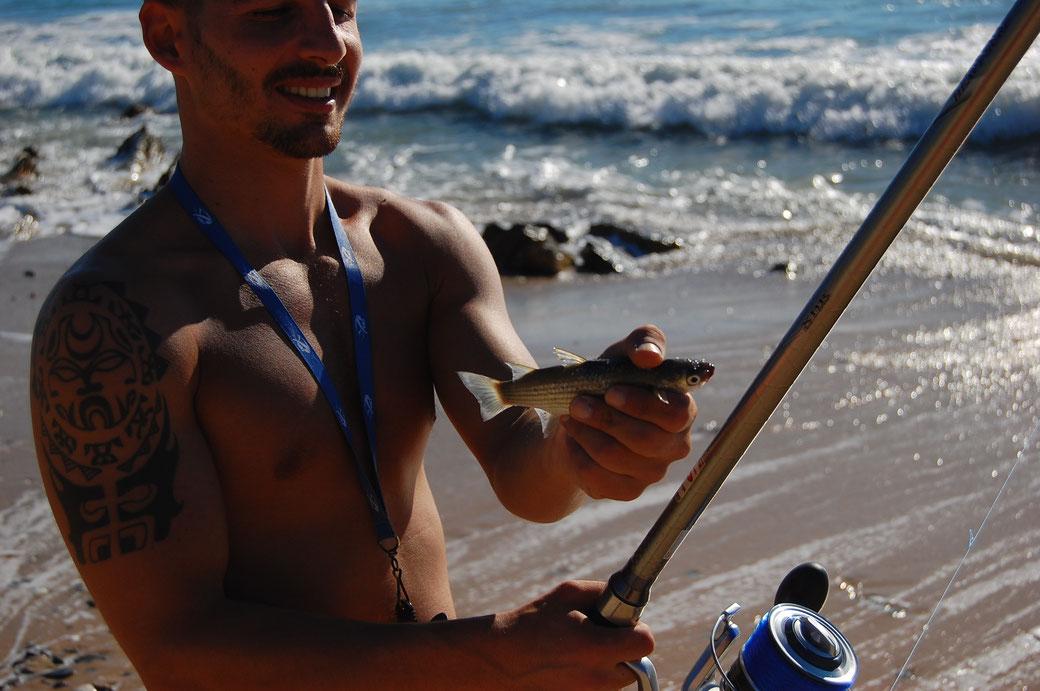 """Und dieser Fisch hat bei seiner Reiseleitung einmal """"Luftschnappen"""" gebucht. Er wurde postwendend wieder in sein Habitat zurückgeführt, Pedro sei dank."""