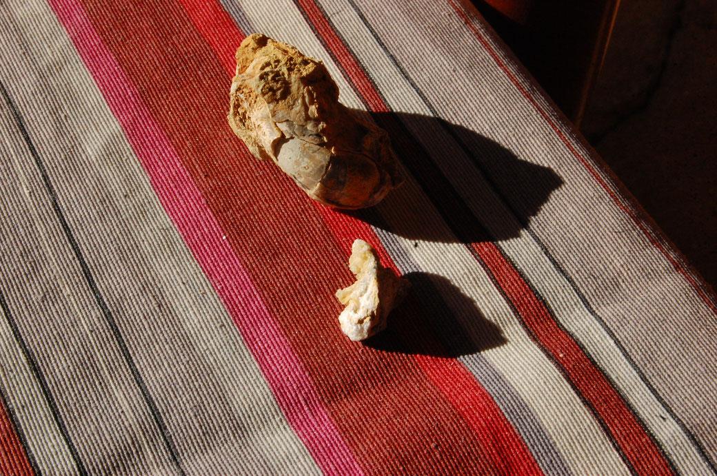 Meine Schätze, die ich gestern fand. Ein olles Fossil, Trilobit nehme ich an. Der Name kommt daher weil unsere Welt schon eine Trillion Jahre alt is und der das ganze gebaut hat. der Kristall dagegen ist nicht so alt, dafür glitzert er.