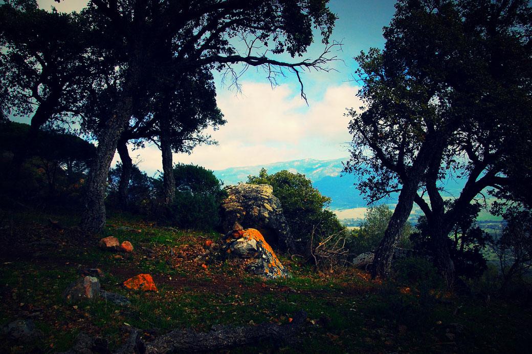 Korkeichen und bunte Felsen lassen die Gegend mystisch erscheinen.