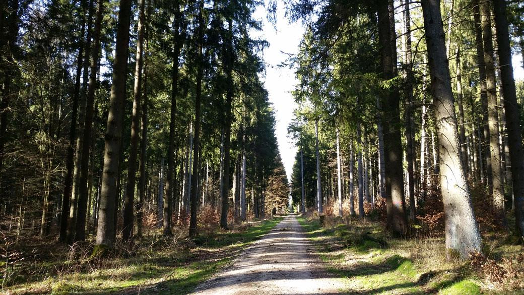 Stubersheim ist zwar noch nicht zu sehen... aber es sind maximal noch 4 km...
