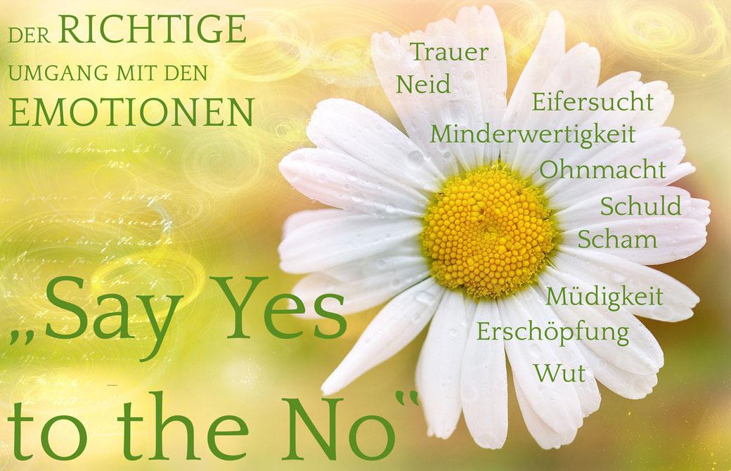 Trauer, Neid, Eifersucht, Minderwrtigkeit, Ohnmacht, Schuld, Scham, Müdigkeit, Erschöpfung, Wut … say YES to the NO, Diane Reichert