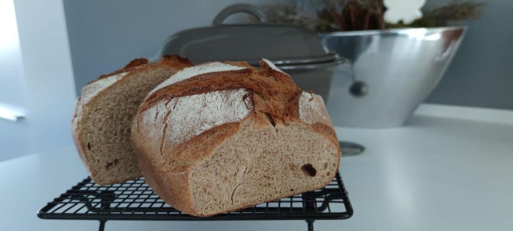 Hier siehst du mein schnellstes Brotrezept wenn ich es mal ganz eilig habe und auf die schnelle ein Brot auf dem Tisch haben muss. Gebacken habe ich diese Brot im Ofenmeister von Pampered Chef