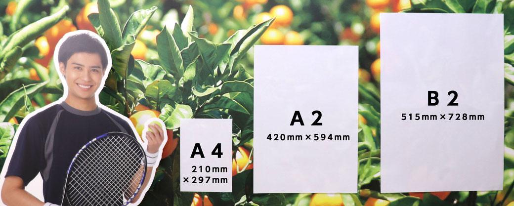等身大パネルと、基本サイズ(A2・B2)を並べてみました。基本サイズ以外はお見積りいたします。
